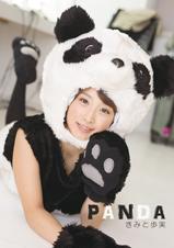 【bit041】PANDA
